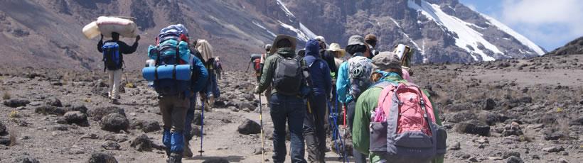 kilimanjaro-home2