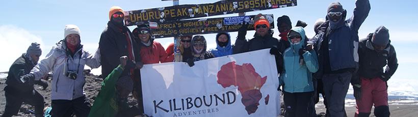 kilimanjaro-home5
